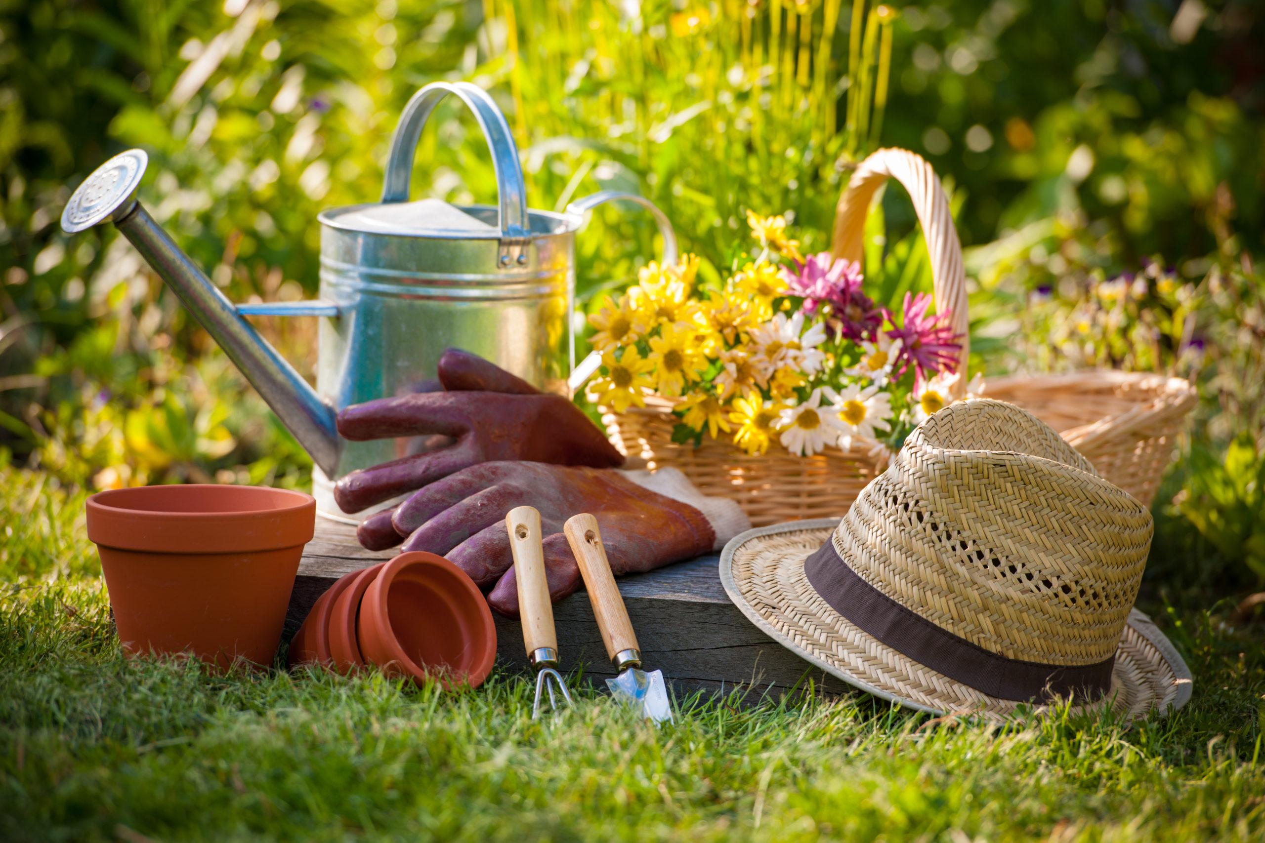 Que faire au jardin au mois d'avril ? Conseils Jardin Bioflore