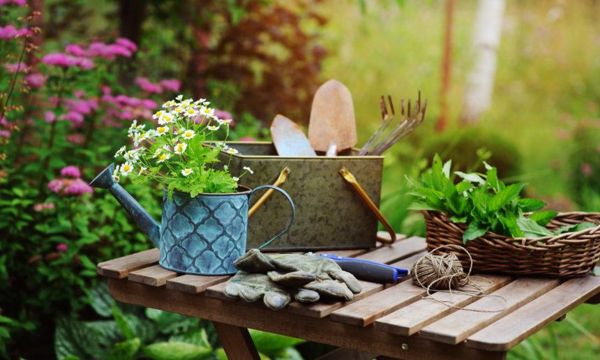 Que faire au jardin au mois de juin ?